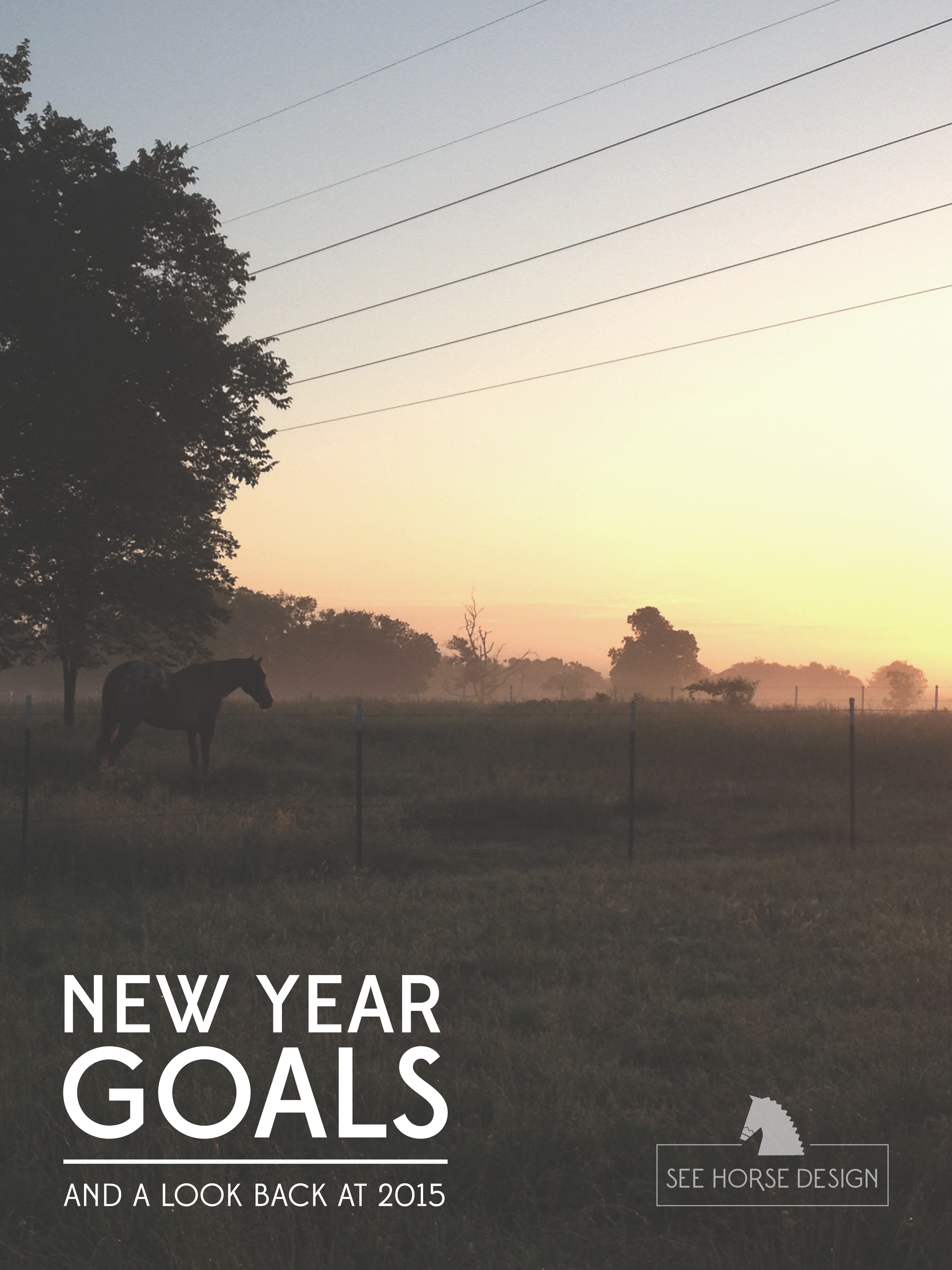 New Year Goals and a look back at 2016 at seehorsedesign.com